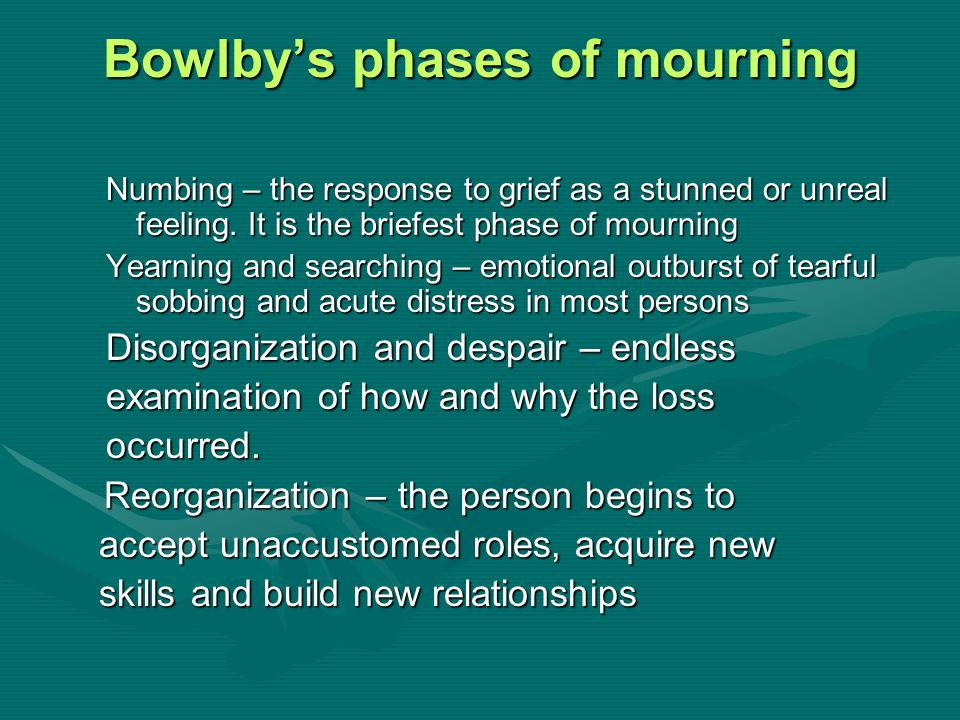 Bowlby's phases of mourning