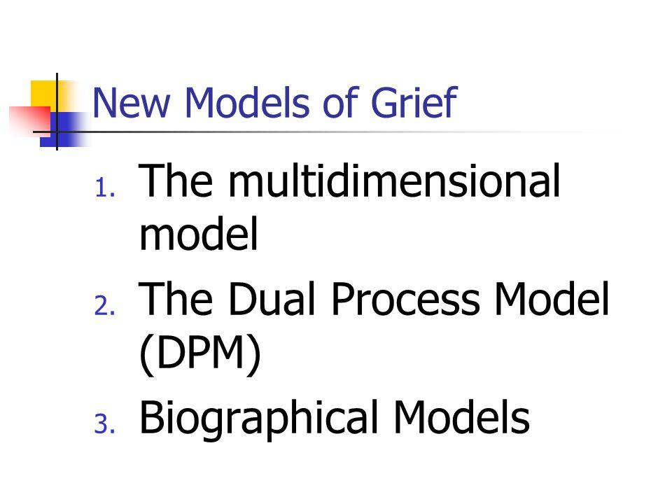 The multidimensional model The Dual Process Model (DPM)