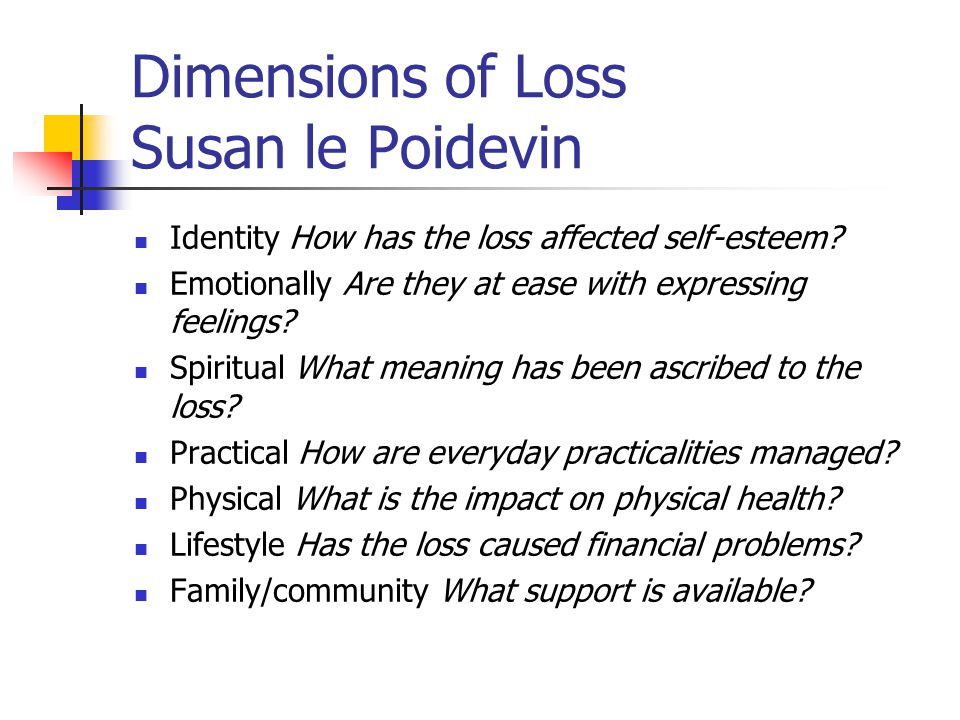 Dimensions of Loss Susan le Poidevin