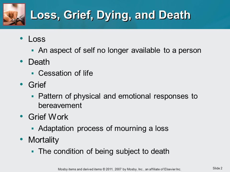 Loss, Grief, Dying, and Death