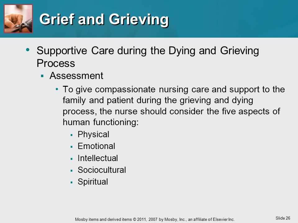 Grief and Grieving Supportive Care during the Dying and Grieving Process. Assessment.