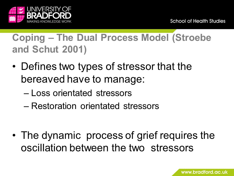 Coping – The Dual Process Model (Stroebe and Schut 2001)