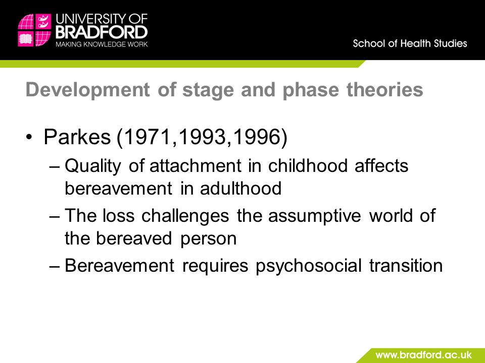 Development of stage and phase theories