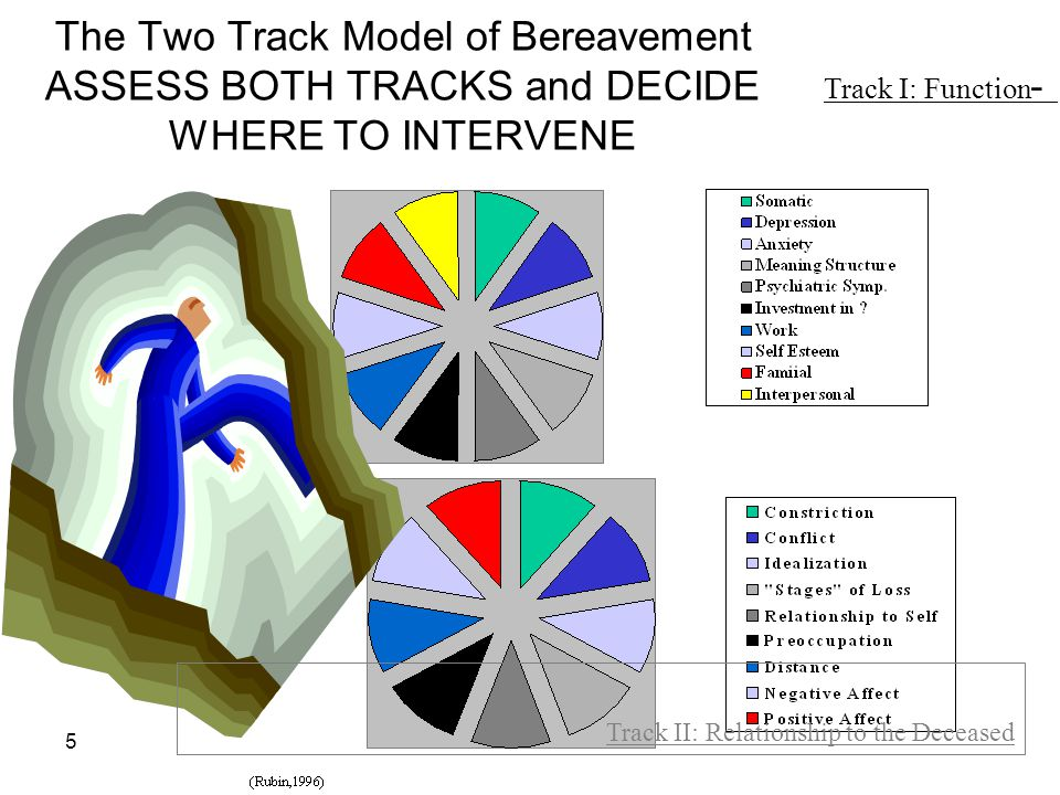 Track I: Function - The Two Track Model of Bereavement ASSESS BOTH TRACKS and DECIDE WHERE TO INTERVENE.