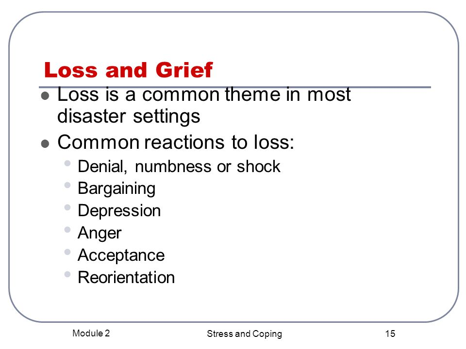 Loss and Grief Loss is a common theme in most disaster settings