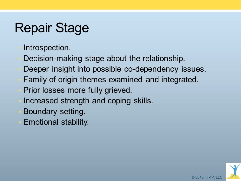 Repair Stage Introspection.