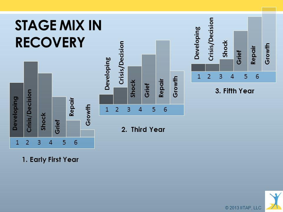 STAGE MIX IN RECOVERY Crisis/Decision Developing Shock Crisis/Decision