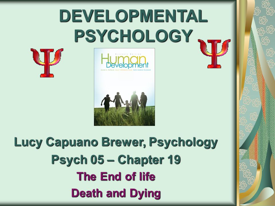 DEVELOPMENTAL PSYCHOLOGY Lucy Capuano Brewer, Psychology