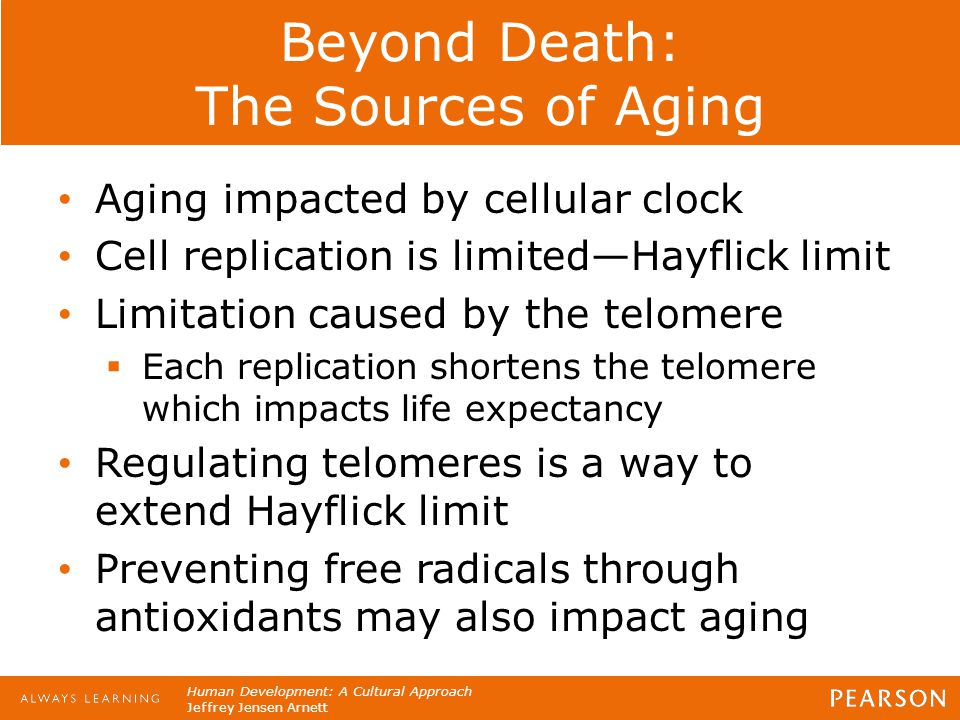 Beyond Death: The Sources of Aging