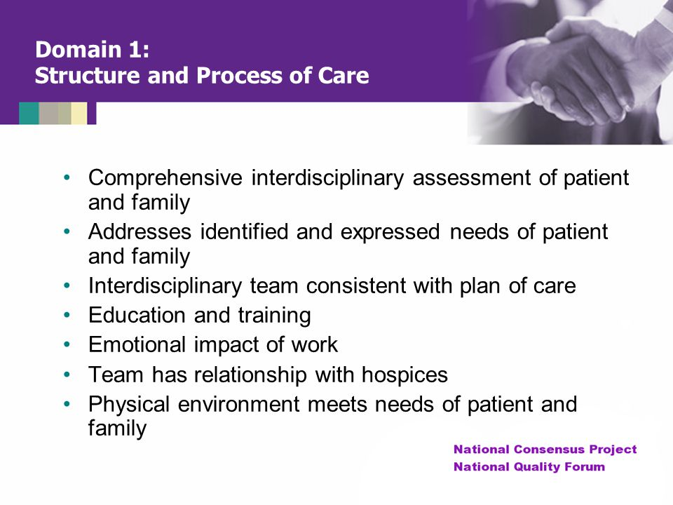 Domain 1: Structure and Process of Care
