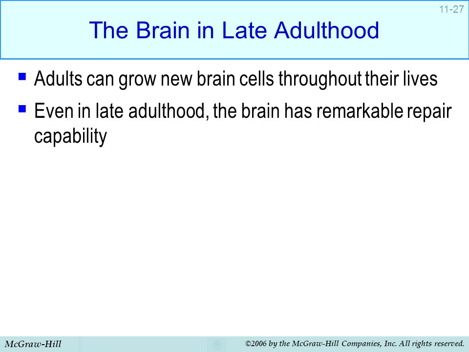 The Brain in Late Adulthood