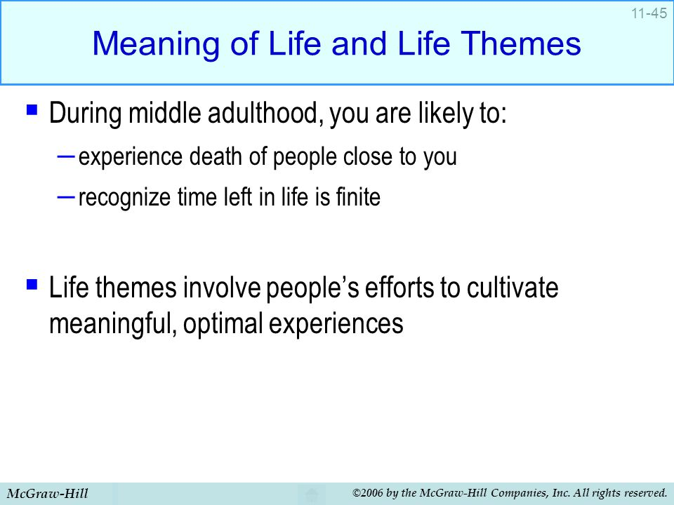 Meaning of Life and Life Themes