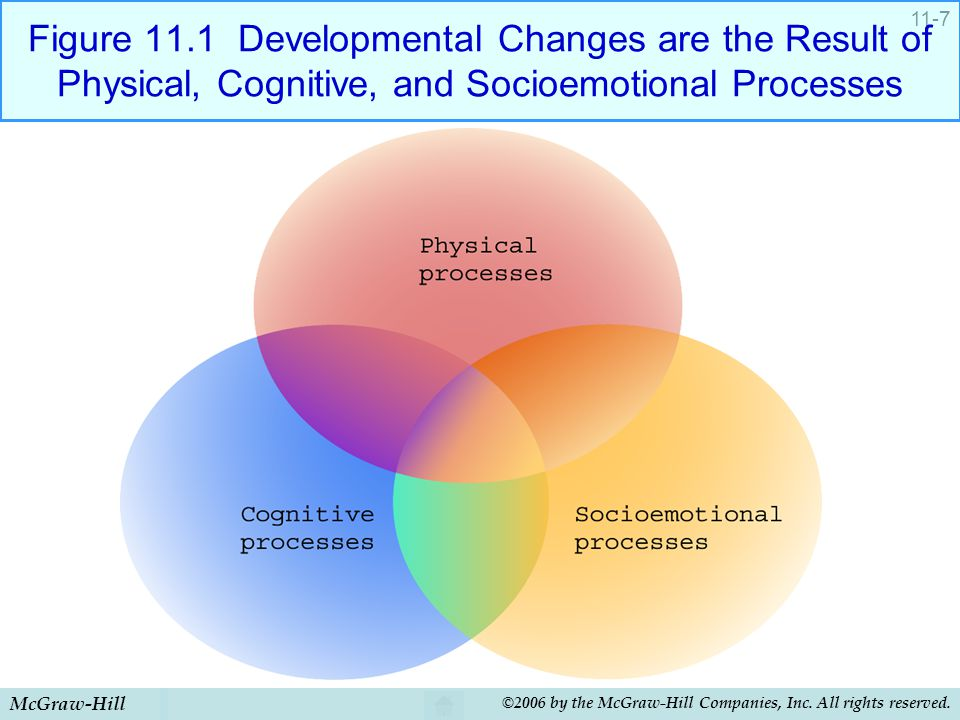 Figure 11.1 Developmental Changes are the Result of Physical, Cognitive, and Socioemotional Processes