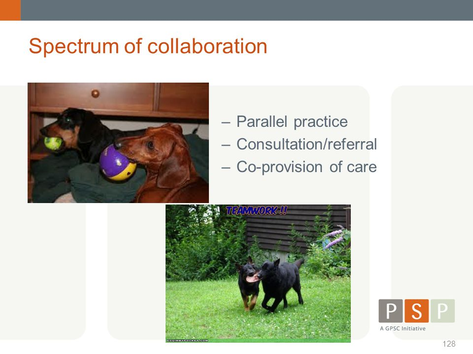 Spectrum of collaboration