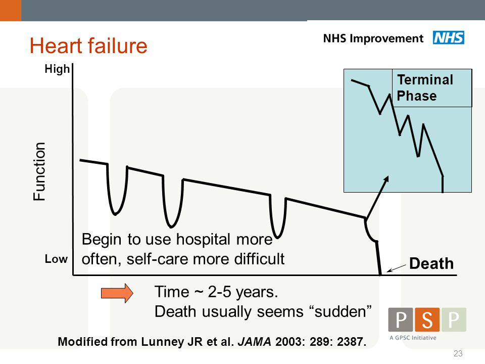 Heart failure High. Terminal. Phase. Function. Begin to use hospital more often, self-care more difficult.