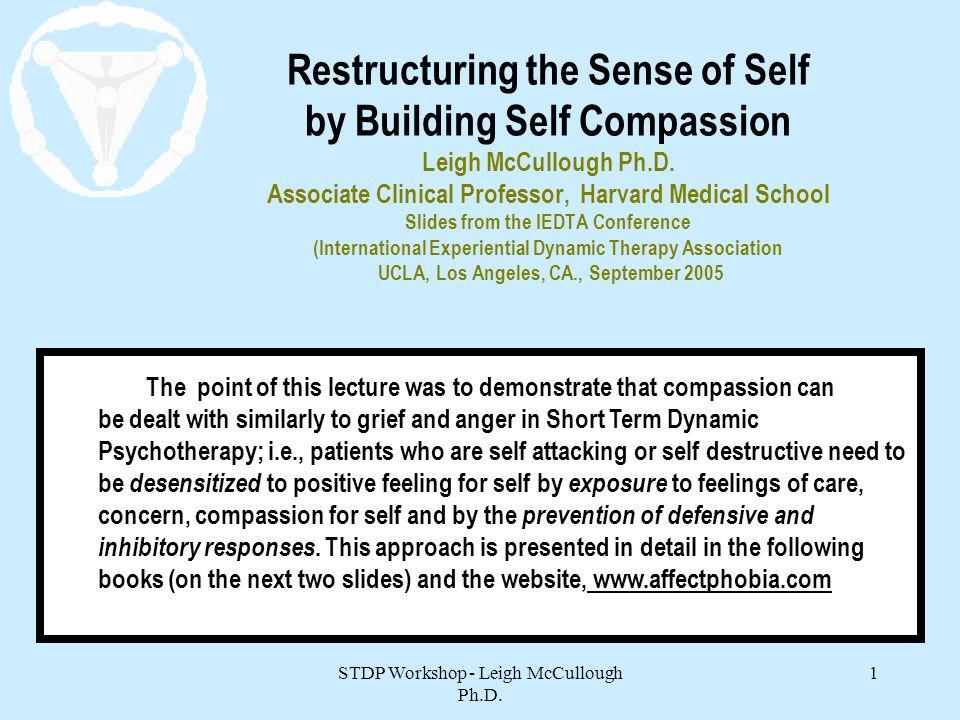 STDP Workshop - Leigh McCullough Ph.D.