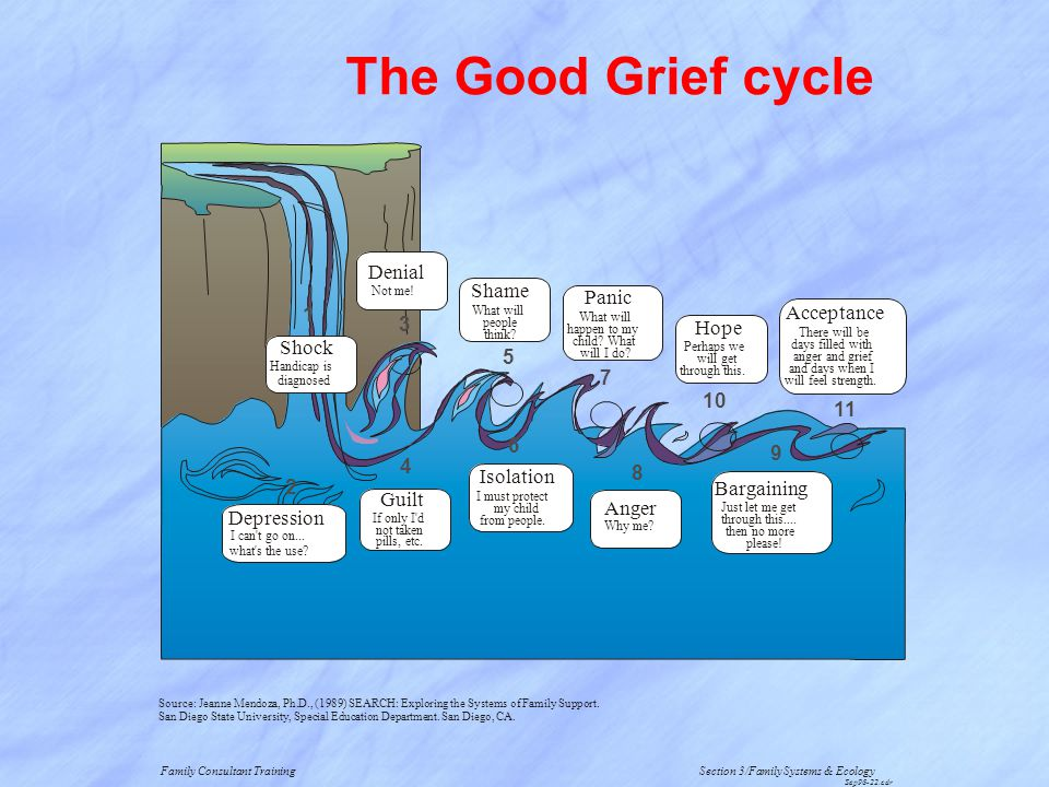 The Good Grief cycle Denial Shame Panic 1 Acceptance 3 Hope Shock 5 7