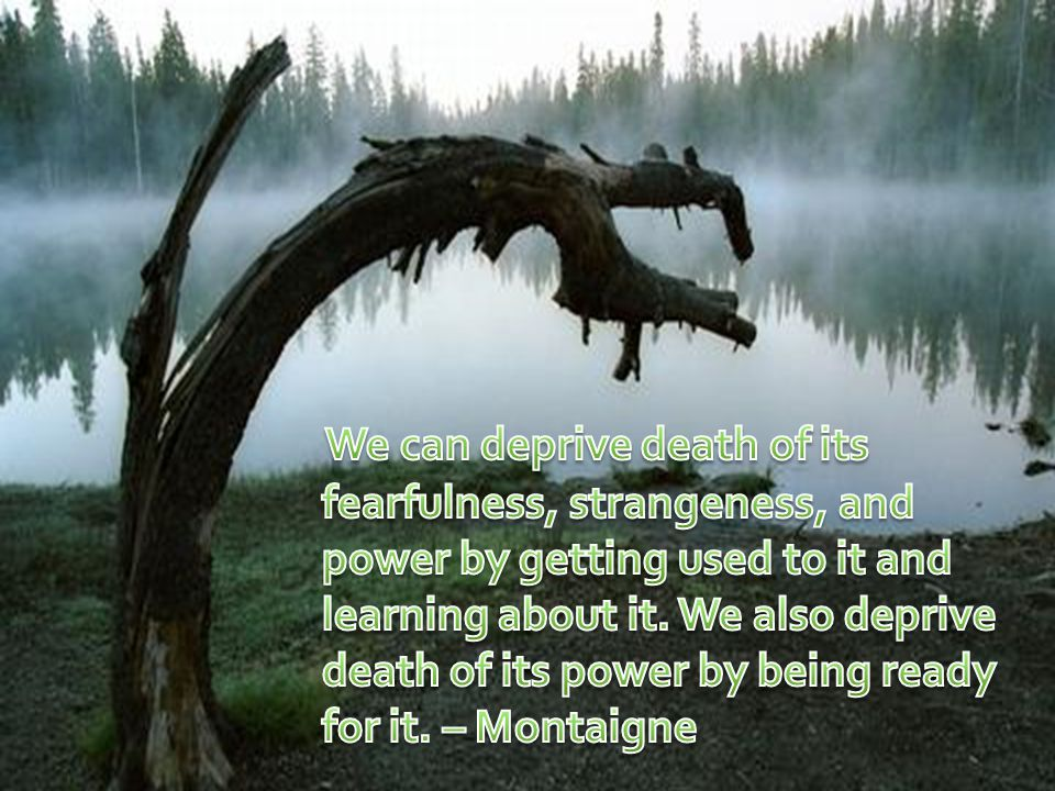We can deprive death of its fearfulness, strangeness, and power by getting used to it and learning about it.