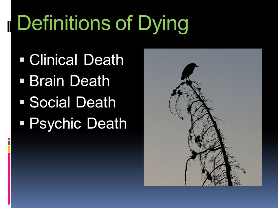 Definitions of Dying Clinical Death Brain Death Social Death