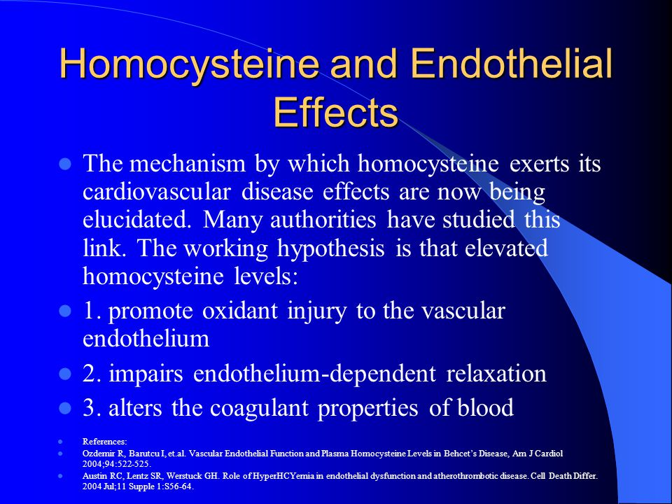Homocysteine and Endothelial Effects