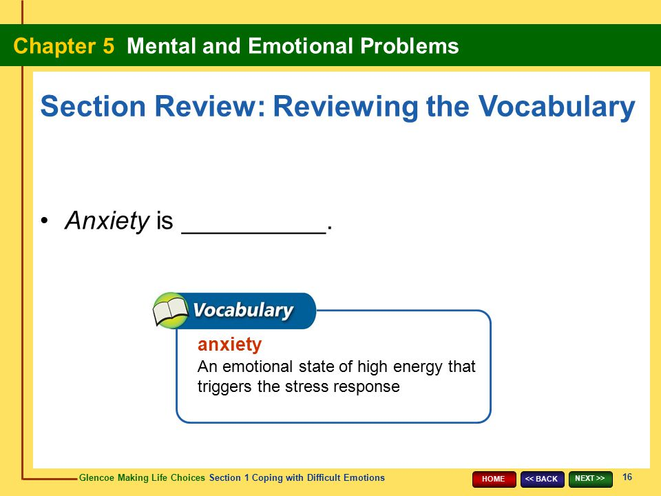 Section Review: Reviewing the Vocabulary