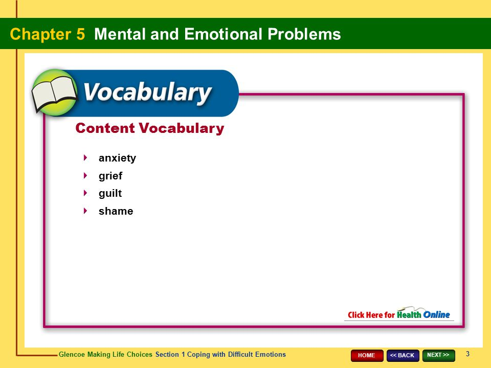Content Vocabulary anxiety grief guilt shame