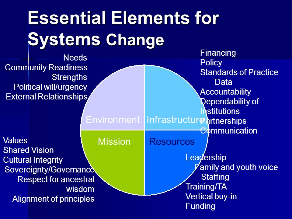 Essential Elements for Systems Change