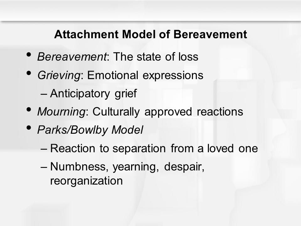 Attachment Model of Bereavement