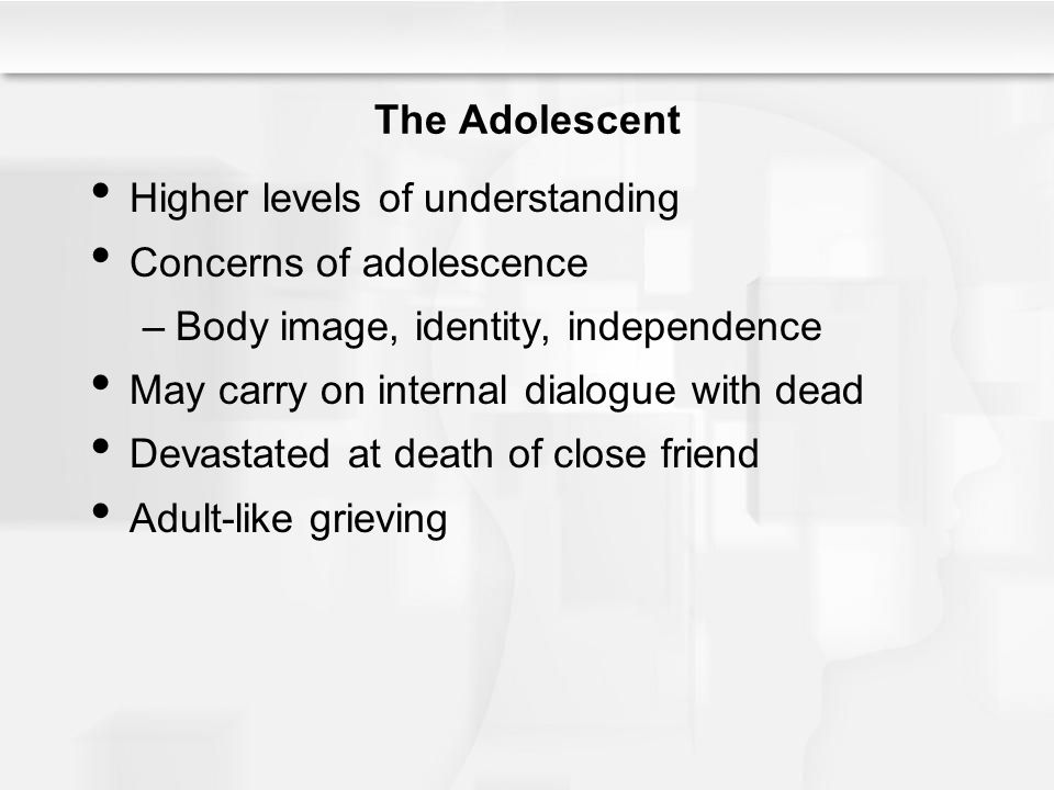 The Adolescent Higher levels of understanding. Concerns of adolescence. Body image, identity, independence.