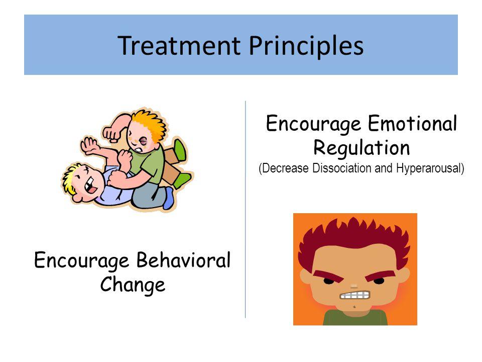 Treatment Principles Encourage Emotional Regulation