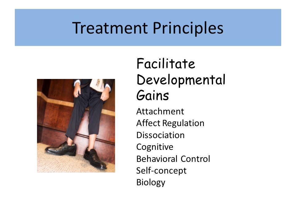 Treatment Principles Facilitate Developmental Gains Attachment