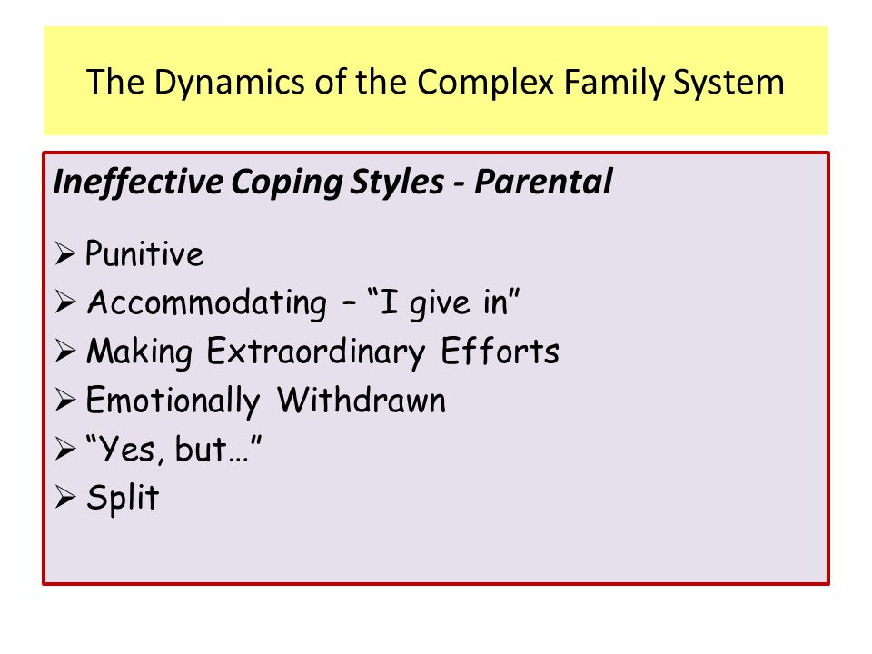 The Dynamics of the Complex Family System