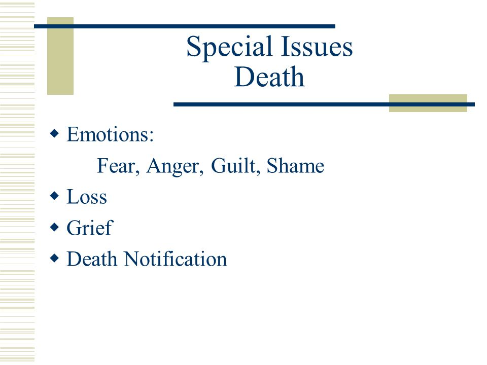 Special Issues Death Emotions: Fear, Anger, Guilt, Shame Loss Grief