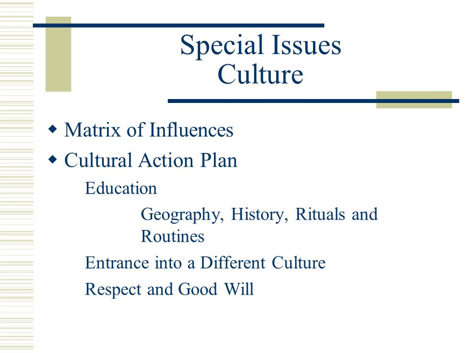 Special Issues Culture