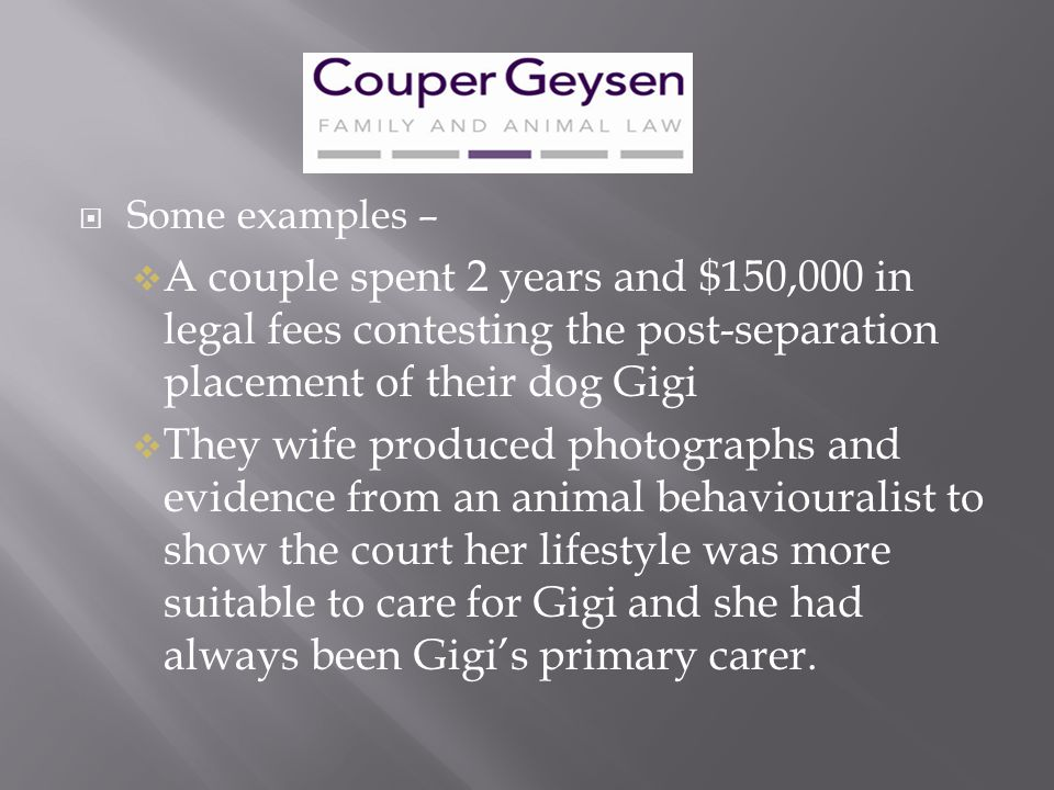Some examples – A couple spent 2 years and $150,000 in legal fees contesting the post-separation placement of their dog Gigi.