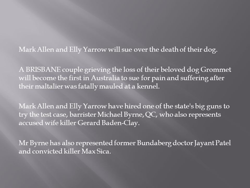 Mark Allen and Elly Yarrow will sue over the death of their dog.