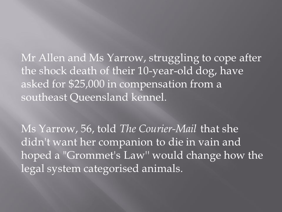 Mr Allen and Ms Yarrow, struggling to cope after the shock death of their 10-year-old dog, have asked for $25,000 in compensation from a southeast Queensland kennel.