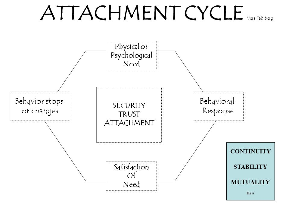 ATTACHMENT CYCLE Vera Fahlberg