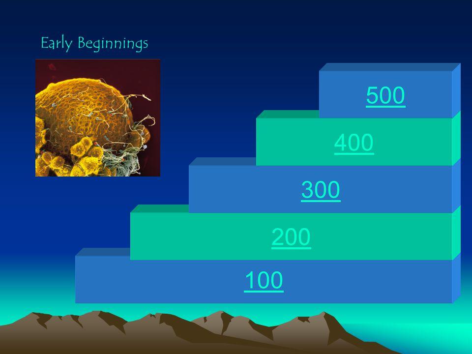 Early Beginnings 500 400 300 200 100
