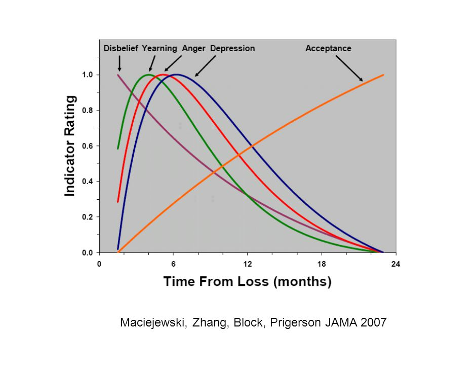Maciejewski, Zhang, Block, Prigerson JAMA 2007