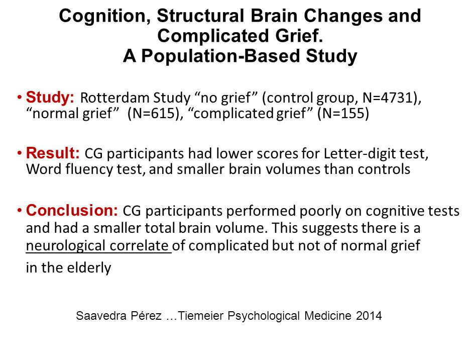 Cognition, Structural Brain Changes and Complicated Grief