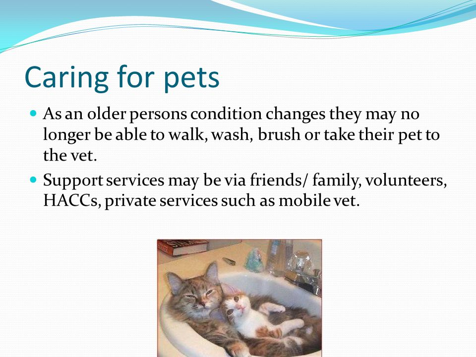 Caring for pets As an older persons condition changes they may no longer be able to walk, wash, brush or take their pet to the vet.