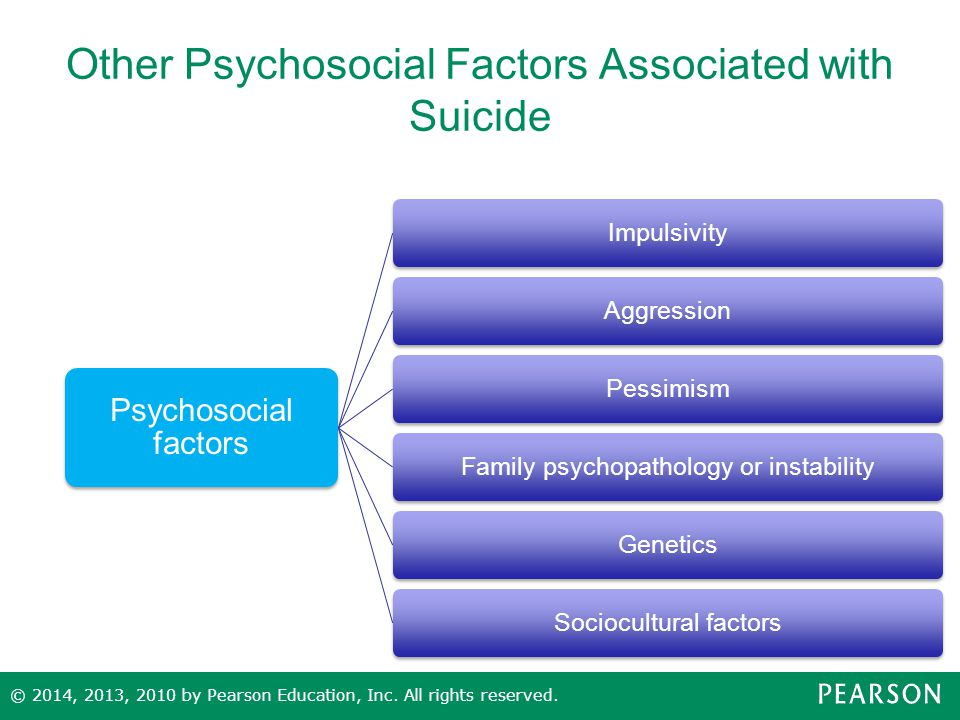 Other Psychosocial Factors Associated with Suicide