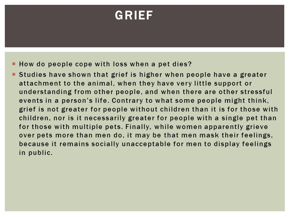 Grief How do people cope with loss when a pet dies
