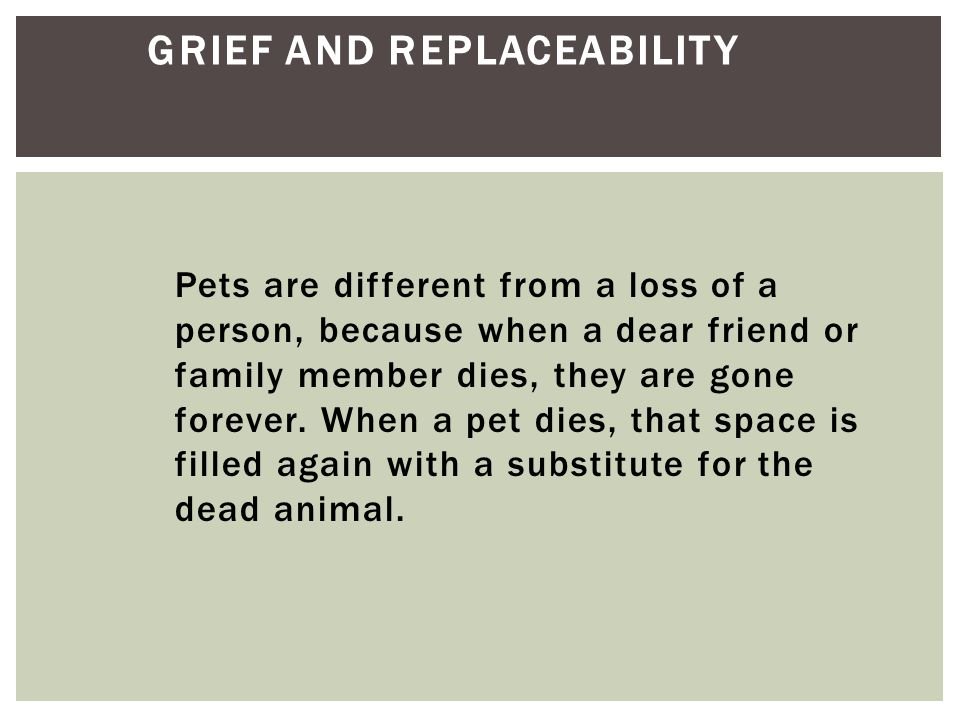 Grief and Replaceability