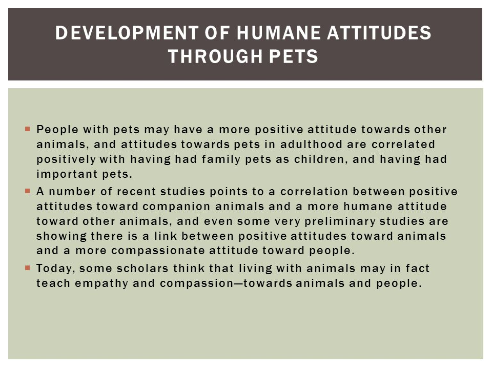 Development of humane Attitudes through pets