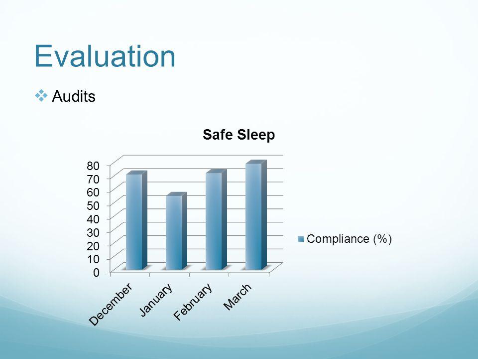 Evaluation Audits