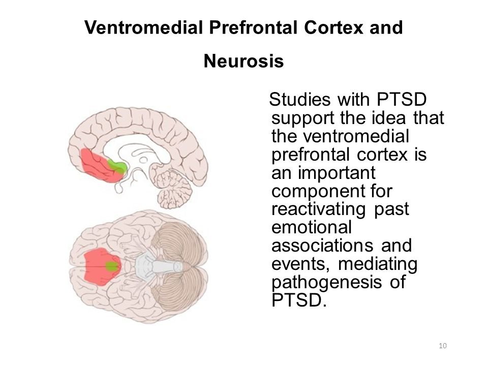 Ventromedial Prefrontal Cortex and Neurosis