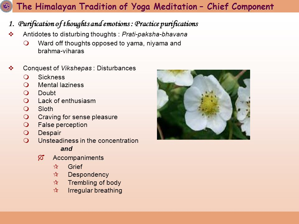 The first meditative tradition