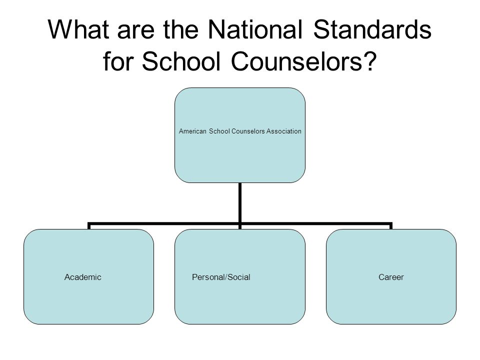 What are the National Standards for School Counselors